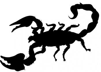Evite escorpiões.