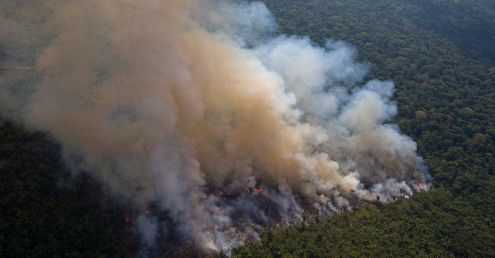 projetos de atuação do IBAMA combate queimadas